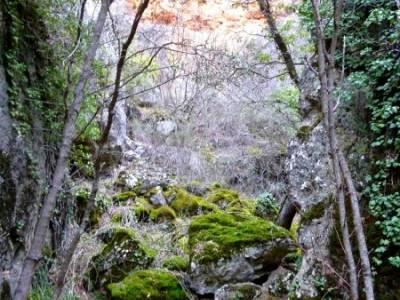 Hoces y cañones del Río Piedra y del Río Gallo -- Laguna Gallocanta; sendero rojo rutas por euska